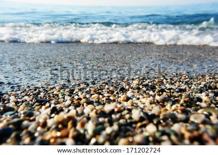 pebble beach in the bachground the ocean
