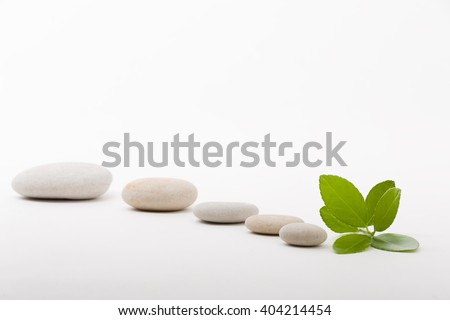 pebble stones and green leaf, like ZEN stone, spa tranquil scene concept
