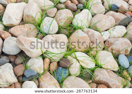 Pebbles and Grass - stock photo