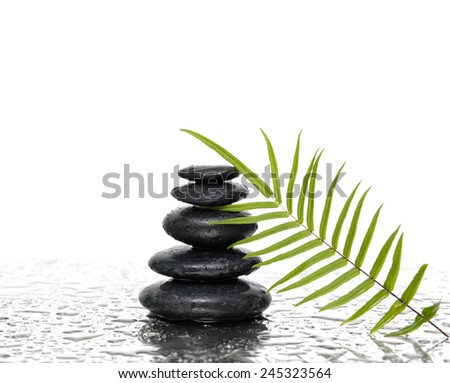 pebbles and green leaf on wet background - stock photo
