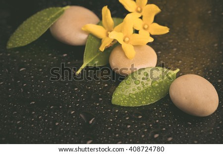 pebbles and yellow flower on black with water drops, ZEN stone, on black background, spa tranquil scene, retro color pastel tone - stock photo