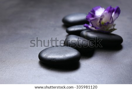 Pebbles with beautiful flower on dark grey background - stock photo