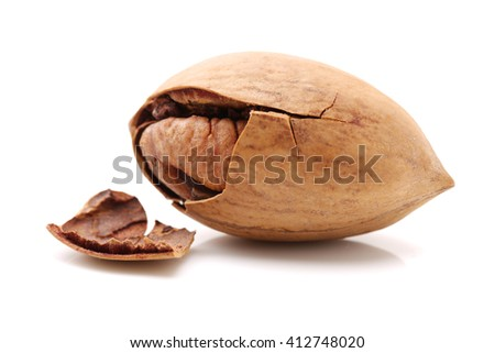 Pecan nuts isolated on a white background - stock photo