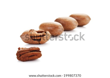 Pecan nuts with kernel - stock photo