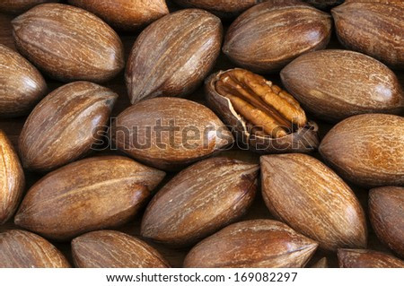 Pecans with and without shells (The background)