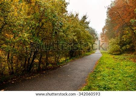 Pedestrian road autumn park