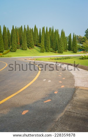 Pedestrian Sign / Road signs - painted sign on asphalt for pedestrian lane - stock photo