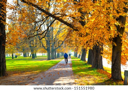 Pedestrian walkway for exercise lined up with beautiful fall trees - stock photo