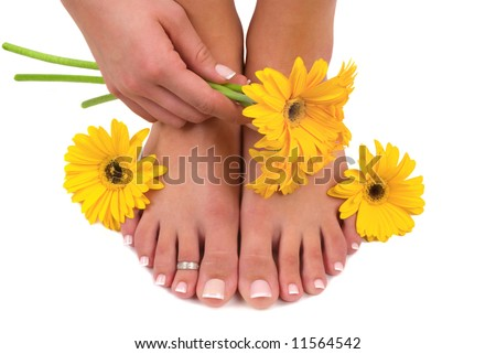 Pedicured feet, manicured hand and gerbera daisies - stock photo