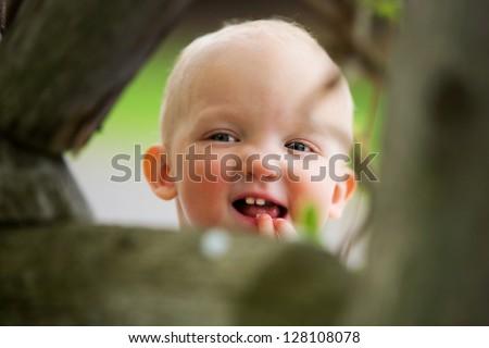 Peek-a-boo!! - stock photo