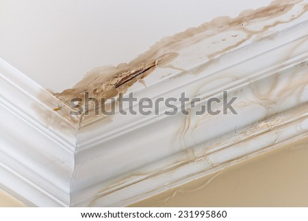 Peeling paint on an interior ceiling a result of water damage caused by a leaking pipe a result of substandard plumbing completed by an unqualified plumber. A common house insurance claim. - stock photo