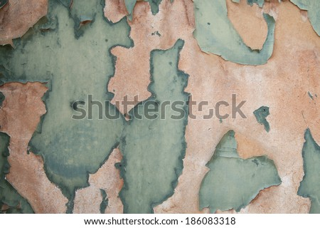 Peeling paint on an old grunge wall - stock photo