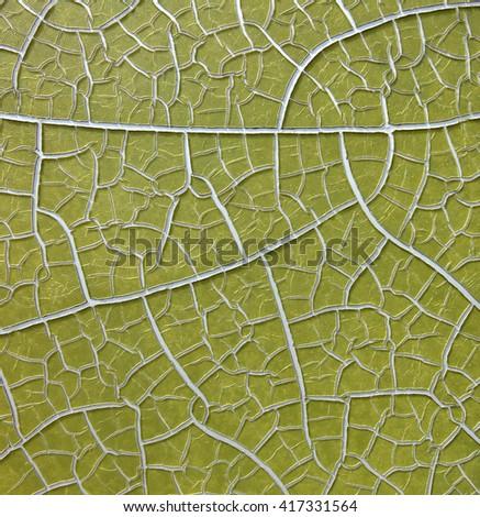 Peeling paint on sign looks like a leaf vein detail - stock photo