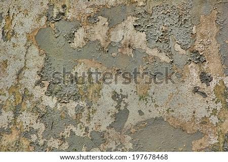 Peeling paint texture, extra grungy - stock photo
