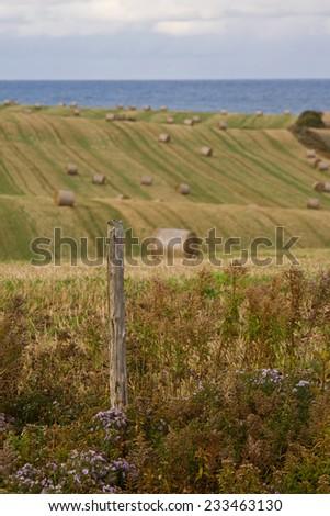 PEI rural scenes, Central Coastal Drive of Prince Edward Island, Canada - stock photo