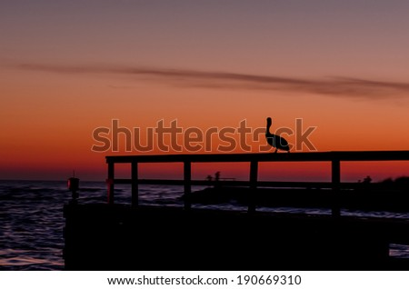 Pelican silhouette at dusk - stock photo