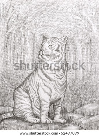 Pencil drawn image of tiger proudly resting in a clearing of the jungle