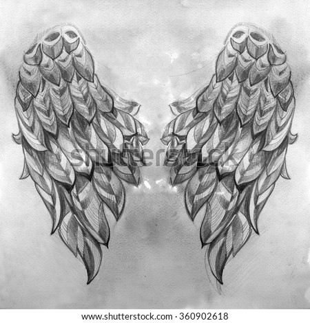 Pencil sketch of the wings on black and white watercolor background - stock photo