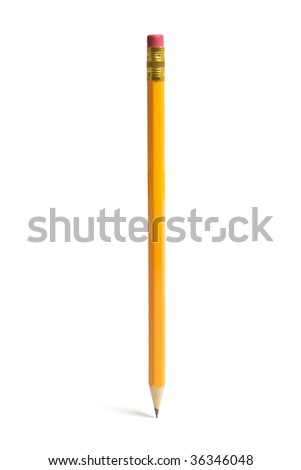 Pencil Standing on Isolated White Background