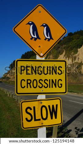 Penguins crossing, New Zealand - stock photo