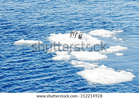 Penguins on the top of the ice piece in Antarctica - stock photo