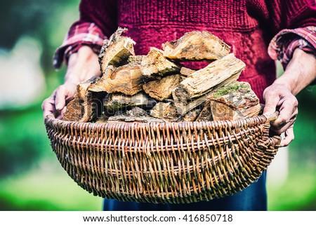 Pensioner senior farmer holding basket full of firewood. Man senior  holding wood out of a basket to ignite the fireplace. - stock photo