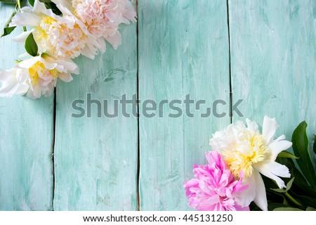peonies on wooden surface - stock photo