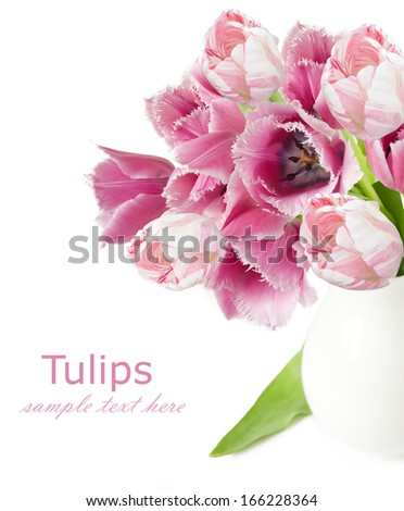 Peony bunch isolated on white background