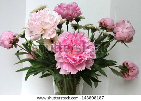 Peony flowers in a vase
