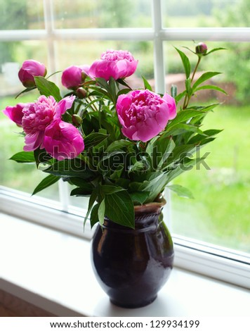 peony flowers on widnow-sill