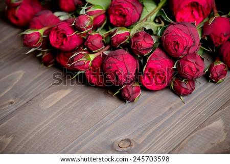 Peony- rose on wood background - stock photo