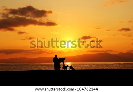 people and pets in the sunset beach