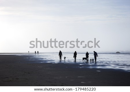 People and pets walking on beach - stock photo