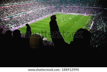 people cheering for a team - stock photo