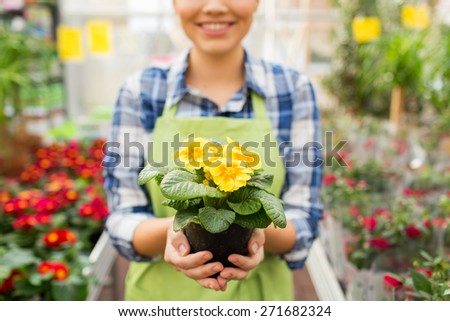 people, gardening and profession concept - close up of happy woman or gardener holding flowers at greenhouse or shop