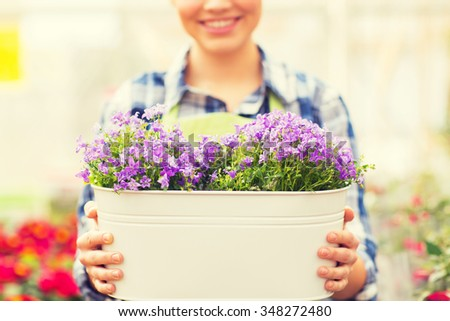 people, gardening and profession concept - happy woman or gardener holding flowers in big pot at greenhouse - stock photo