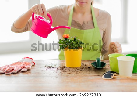 people, gardening, flower planting and profession concept - close up of woman or gardener hands planting and watering roses with can at home - stock photo