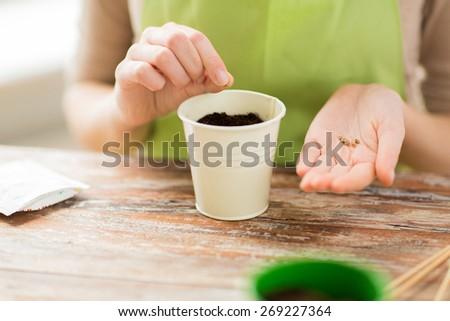 people, gardening, seeding and profession concept - close up of woman hands with paper bag and trowel sowing seeds to soil in pot - stock photo