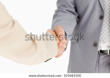 People in suit having an agreement against white background - stock photo