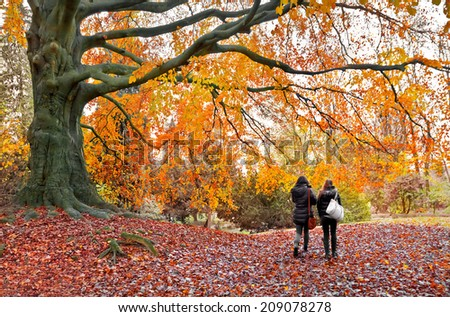 People in the autumn park. Autumn landscape. - stock photo