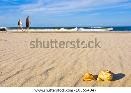 People nordic walking on beach with shells
