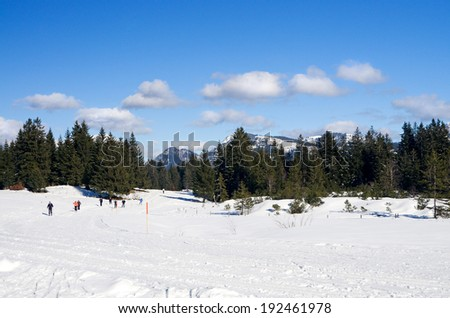 "people on cross country ski-run in village Oberjoch, mountain  ""Oberallgaeu"", ""Allgaeu"", bavaria, germany - stock photo"