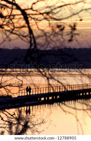 people on pier visible from behind tree - stock photo