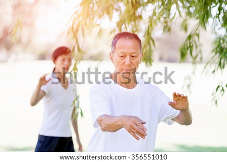 People practicing thai chi in the park in the summertime