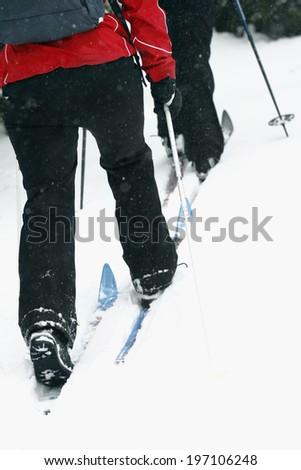 People skiing, low section, Vasterbotten, Lapland, Sweden - stock photo