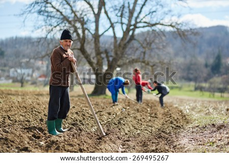 People sowing potato tubers into the plowed soil