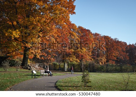The Bronx Stock Images Royalty Free Images Vectors Shutterstock