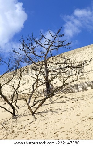 People visiting the Famous dune of Pyla, the highest sand dune in Europe, in Pyla Sur Mer, France. - stock photo
