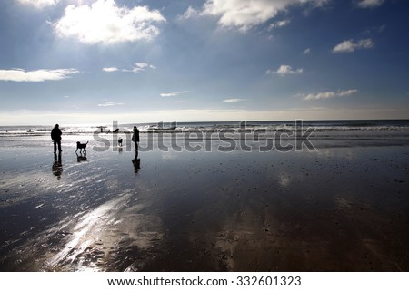 People walking dogs on a beach in winter with surfers
