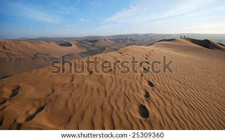 people walking on a sand dune